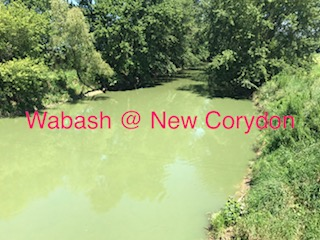 wabash river polluted by CAFOS